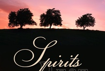 Spirits Book Three:  Spirits' Rest / The final volume in the Spirits Trilogy, now available from Desert Breeze Publishing, Amazon, and other eBook venues.  / by Barbara Scott