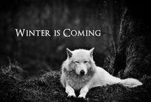 Game of Thrones / by Dakota Kudra
