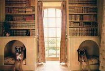 Dog house / by K H