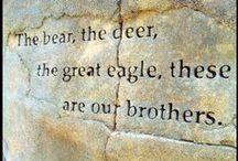 Amerindian quotes