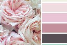 Colors / Colorcombinations