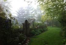 Gardening / Ideas for creating beautiful sanctuaries  / by Katie Zientek