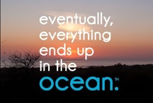 be {ocean minded} / because eventually, everything ends up in the ocean.  / by Ocean Minded