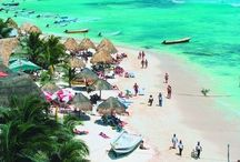 Tropical Places / Beach lovers paradise! / by Diane Mamchur