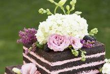piece of cake / by Nikki Beltz