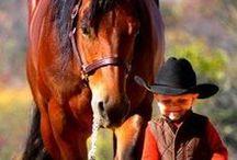 LITTLE COWBOYS / The Boys Who Love Their Horses