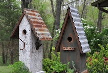 BIRD CAGES & HOUSES / A place for birds to live and eat.... / by Rethal Conkle