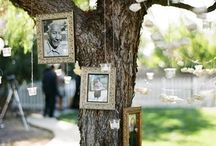 Wedding - Remembering Lost Loved Ones