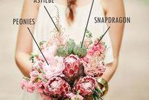Wedding Planning Tips / Wedding planning tips for the DIY bride and groom