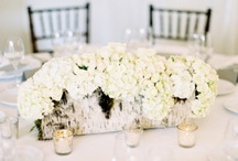Centrepieces & Table Settings / Get creative with your centrepieces & table settings! 