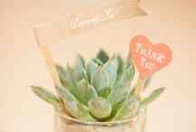 Wedding Favors / Gifts your guests will love <3 RegistryLove / by RegistryLove
