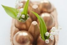 Events {Easter & Spring} / by Ashley Drummy