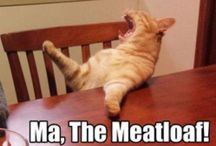 Funny Haha of Funny Heehee?