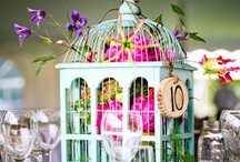 Birdcages / by Jan Gold