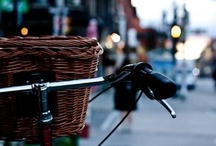 Bicycles / by Jan Gold