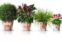 Facepots by melbourne designer, Igor Mitin
