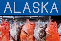 Alaska / by Jan Gold
