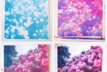 Mon Petit Fleur... / by September Clementine