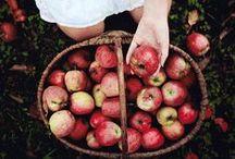 Dear Autumn,... / you are my favourite! xo:)