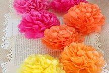 Virágok / virágokról