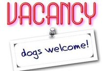 Dog Haven / Dogs are more than welcome to come to stay and play in the Grand Haven area!