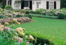Curb Appeal / Curb appeal / by Jenna Gillane