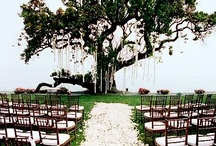 Ceremony & landscape