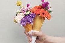 / FLOWERS / / by Francesca Bro