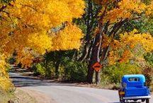 so Autumn / Fall