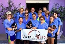Image of the week-World Vets / Image of the week. World Vets International Aid for Animals.   www.worldvets.org