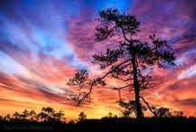 Photos - Sunset/Sunrise / Beautiful colours created by the sun.  / by Kat Lagerquist