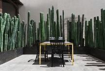 outdoor living / porches, backyards, gardening / by Kat Randall