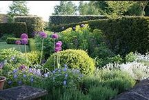The greatness of gardens / Gardens are the best things ever. / by Purple Urchin Beck