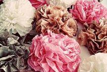 Paper Crafts / by Jessica Savitske-Holton