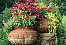 Keeping It Contained (Container Gardening) / You can bring in a lot of color and texture with mixed containers.