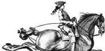 Chic Equestrian