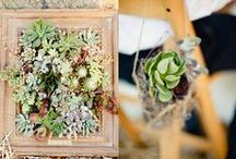 When Two Become One / Weddings, receptions and all things husband and wife.  / by Bambu Earth