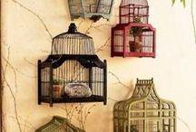 'Bird'-'Cages'