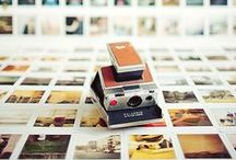 photography / photo inspiration, how-tos, reviews, & editing tips. / by Kay Elizabeth