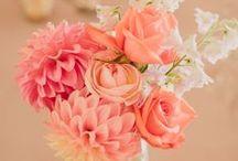 Peach & Coral Wedding