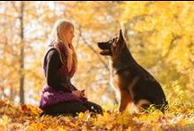 Family Dog! Working Dog! / by Margie Hillenbrand