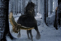 ~Bubo & Pegasus~ / If I had an animal alter~I would choose a owl, can live in the woods, is solitary, roams the night or a horse, but only if wild... / by Patricia Margaret