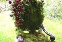 Garden of Delight / by Anna Silver