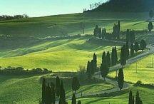 Italia ❤