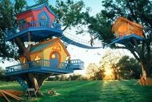 Love of Tree Homes
