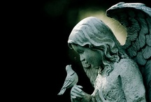 """Angels / """"When angels visit us, we do not hear the rustle of wings, nor feel the feathery touch of the breast of a dove; but we know their presence by the love they create in our hearts."""""""