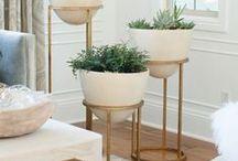 Decorate | Indoor Plants / Indoor Plant Ideas
