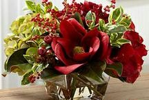 Home Interiors~Floral Arrangements / Floral arrangements for the home  / by Roylene Turner