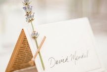 party PLACECARDS / by Vintage Dish Rental