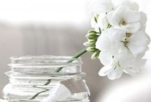 White / by Scents and Feel Foutas